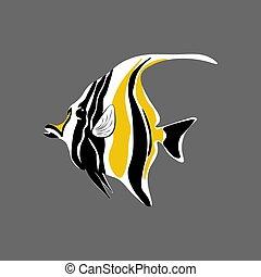 maure, fish, idole