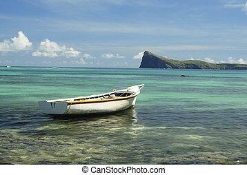 Mauritian landscape