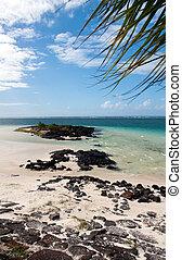 mauritius, lava, stenen, strand