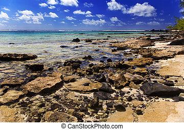 Mauritius. Stony landscape of the island Gabriel.