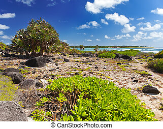 Mauritius. Stony landscape of the island Gabriel