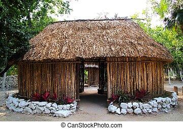 maya, méxico, casa, palapa, choza, madera, cabaña