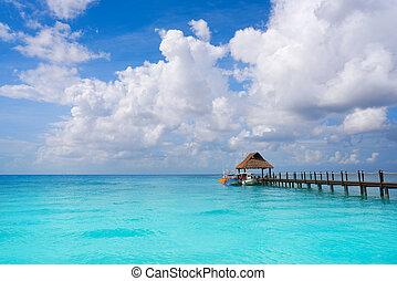 maya, riviera, méxico, cozumel, isla, playa