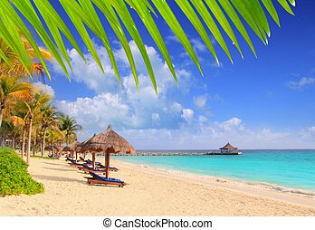 mayan, カリブ海, riviera, サンルーフ, 木, やし 浜