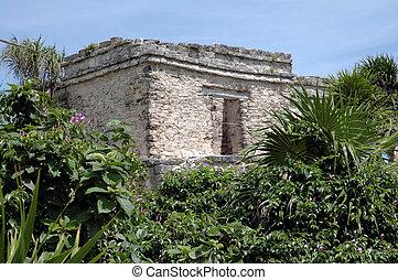 Mayan Building