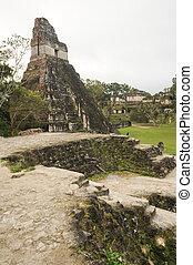 mayan, fördärvar, tikal
