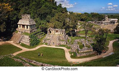 mayan, gruzy, chiapas, palenque, meksyk