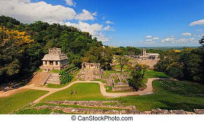 mayan, gruzy, w, palenque, chiapas, meksyk