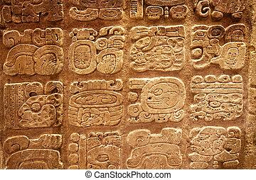 mayan, hieroglyphs