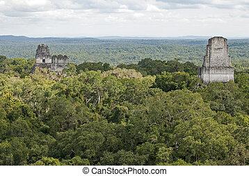 Mayan pyramids above the jungle canopy