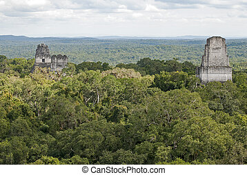 Mayan pyramids above the jungle canopy