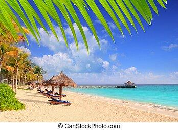mayan riviera, strand, palmträdar, soltak, karibisk