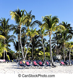 Mayan Riviera tropical beach