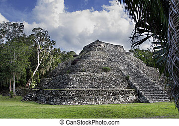 mayan ruin pyramid in deep forest