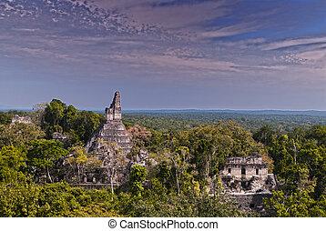 Tikal - Mayan ruins of Tikal in Guatemala