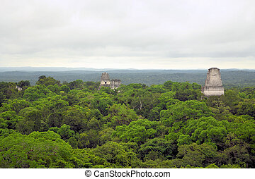 Mayan temples above the forest in Tikal, Guatemala - Temples...