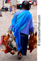 Mayan Woman with Chickens in Chiapas, Mexico