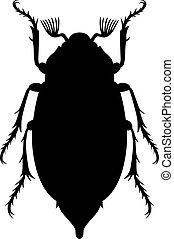 Maybug