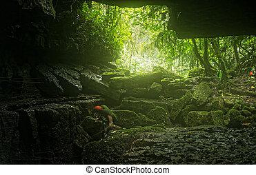 mayei, speleologist, jeskyně, klesající