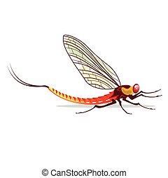 Mayfly vector illustration