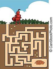maze ant quiz