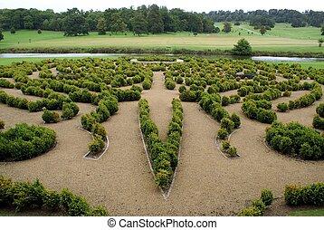 maze. landscape art.