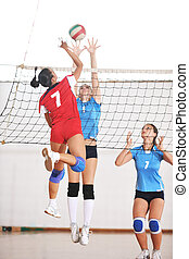 mazlit se volleyball, sluka, domovní, hra