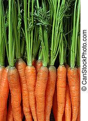 mazzo carote