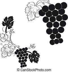 mazzo, uva