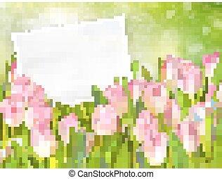 mazzolino, 10, tulips., eps