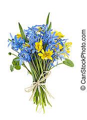 mazzolino, di, fresco, fiori primaverili