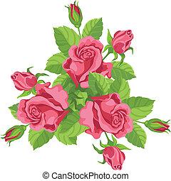 mazzolino, divertente, rose