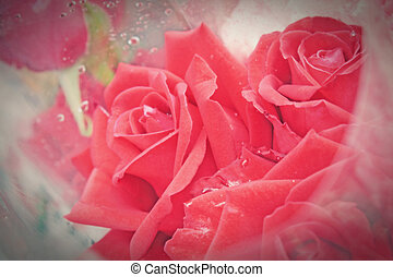 mazzolino, fiori