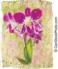 mazzolino, orchidee