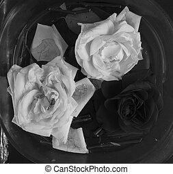 mazzolino, rosa, astratto