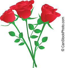 mazzolino, rosa, tre, rosso