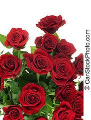 mazzolino, rose, sopra, bianco rosso