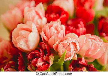 Mazzolino,  Tulips, bianco, Pubblicità, fondo