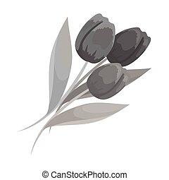mazzolino, tulips., rosso