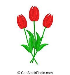 mazzolino, vettore, tulips., illustration., rosso