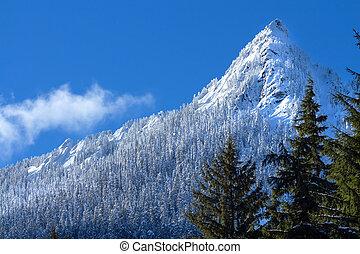 McClellan Butte Snowy Trees Snow Mountain Cascade Mountains Snoqualme Pass Washington