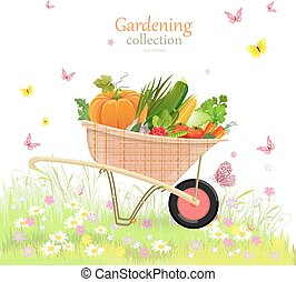me, jardin, légumes, rustique, herbes, brouette, agréable