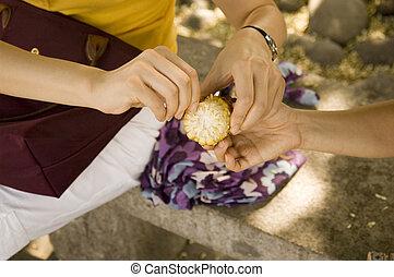 me, maïs, main