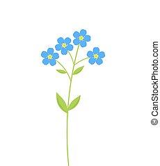me, non, fiori, dimenticare
