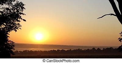 meadow., été, nord, sur, caucase, paysages, levers de soleil