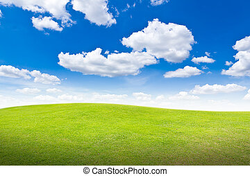 meadow against blue sky