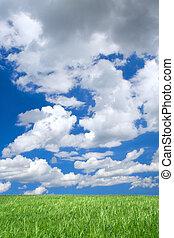 meadow against summrer sky
