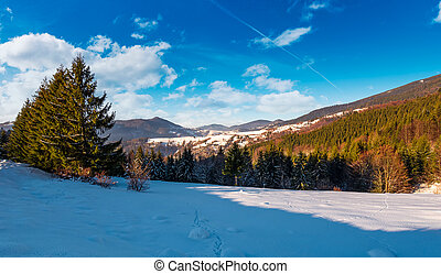 meadow among forest in winter mountains - snow covered...