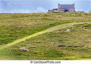 meadow and house