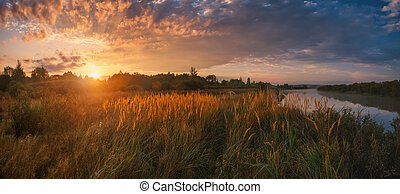 Meadow and river illuminated by the sun